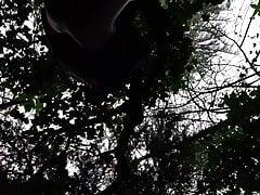 Holzpumpe