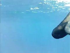 Pod wodą