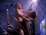 Denise Crosby Nude Sex Scene In Red Shoe Diaries ScandalPlan