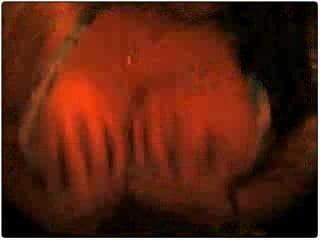 Mogcap I Heart Hoes Teen Webcam Heart Porn8
