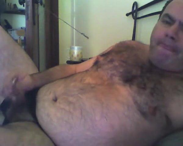 Handsome bear 81018