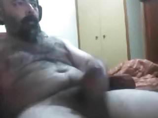 Bear 29917...
