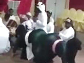 Arab Booties Twerking