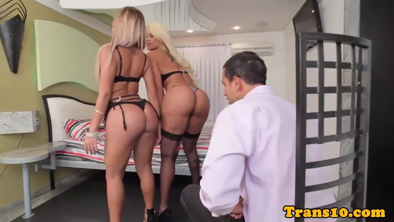 Gorgeous Shemales Videos