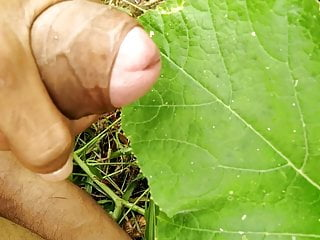 Big Cock Masturbation in the field and cumshot on grass