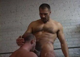 Arpad gay porno