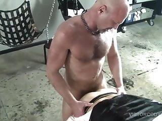 Gorilla bareback porn...