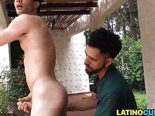 Latin lovers 5