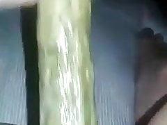 analPorn Videos