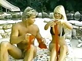 Francois Papillon - Hawaii Vice 3 (1989)